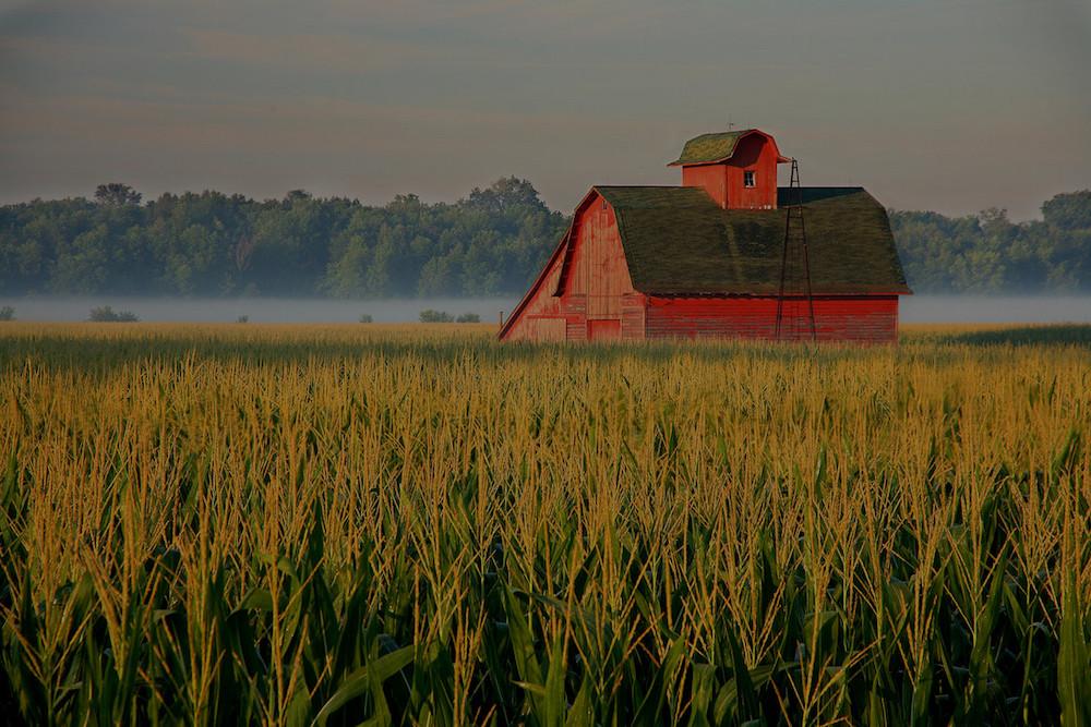 farm and crop insurance Bradenton, FL